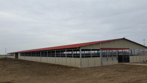 Pacheco High School New AG Barn & Farm